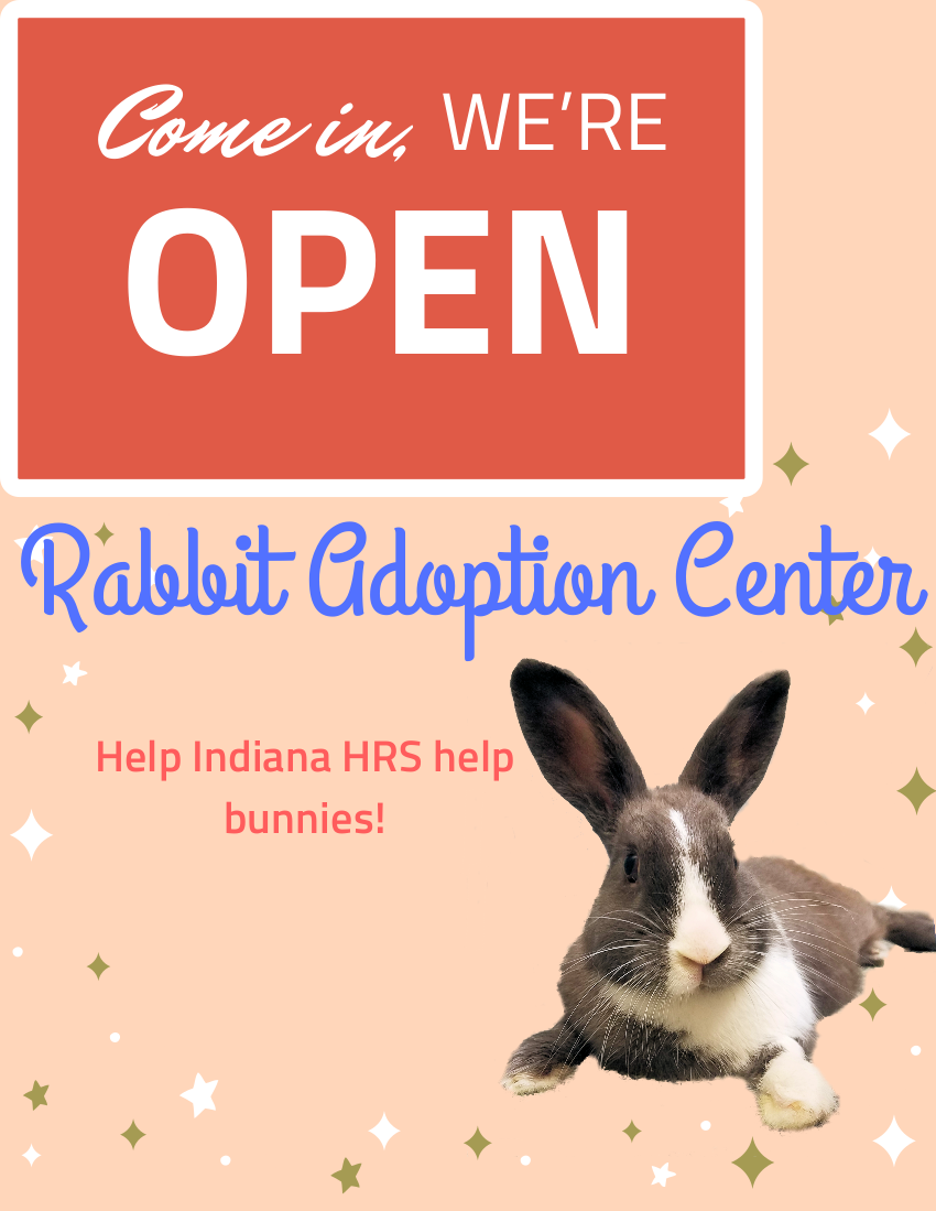 adoption center is open